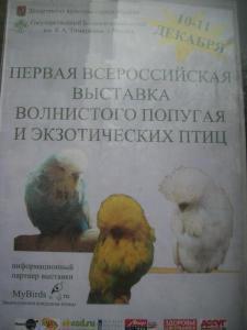 blog-12351-1323628323_thumb.jpg