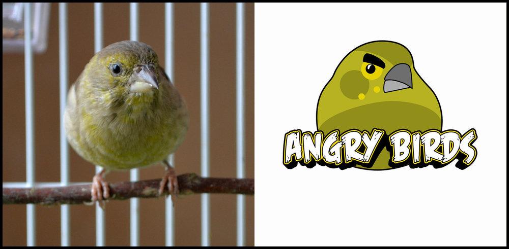 angry.thumb.jpg.4dead90b186aecf31f1469124a69e10b.jpg