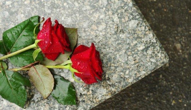 rozes-kapi-beres-seras-49276183.jpg