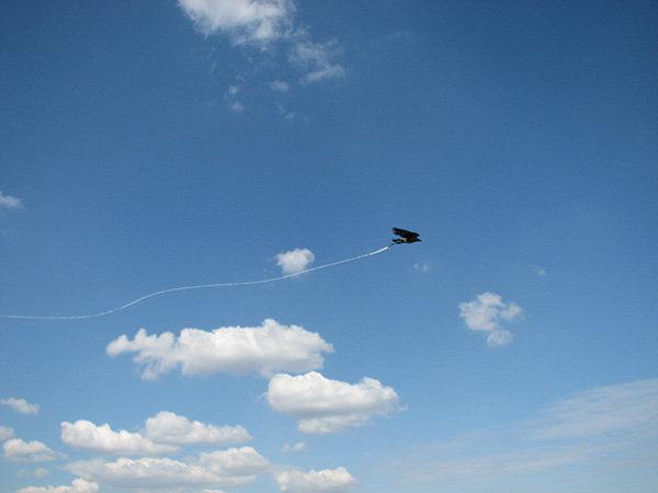 реактивная ворона.jpg