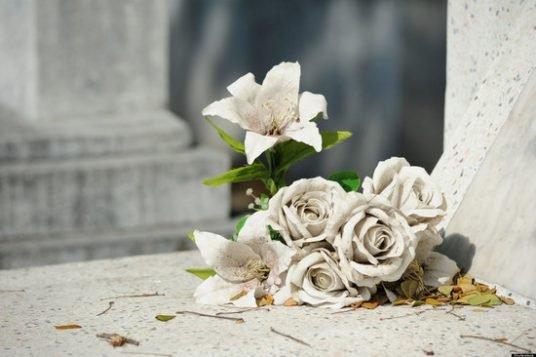 -которые-приносят-на-кладбище-na60rpvytb2m7h0w2x5bklqifh5kcdmy6tanjrvunm.jpg