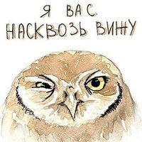 Strix Owl