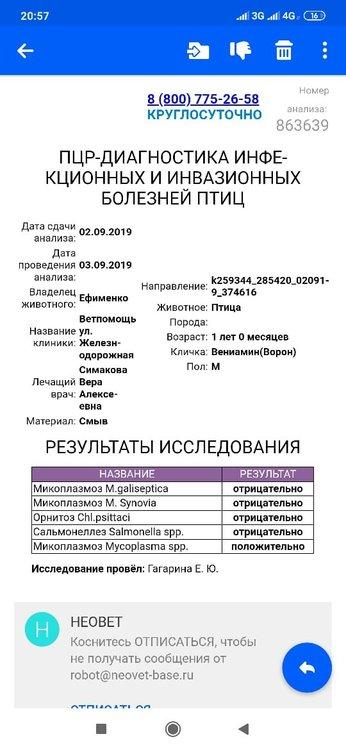 IMG-20190903-WA0017.jpg