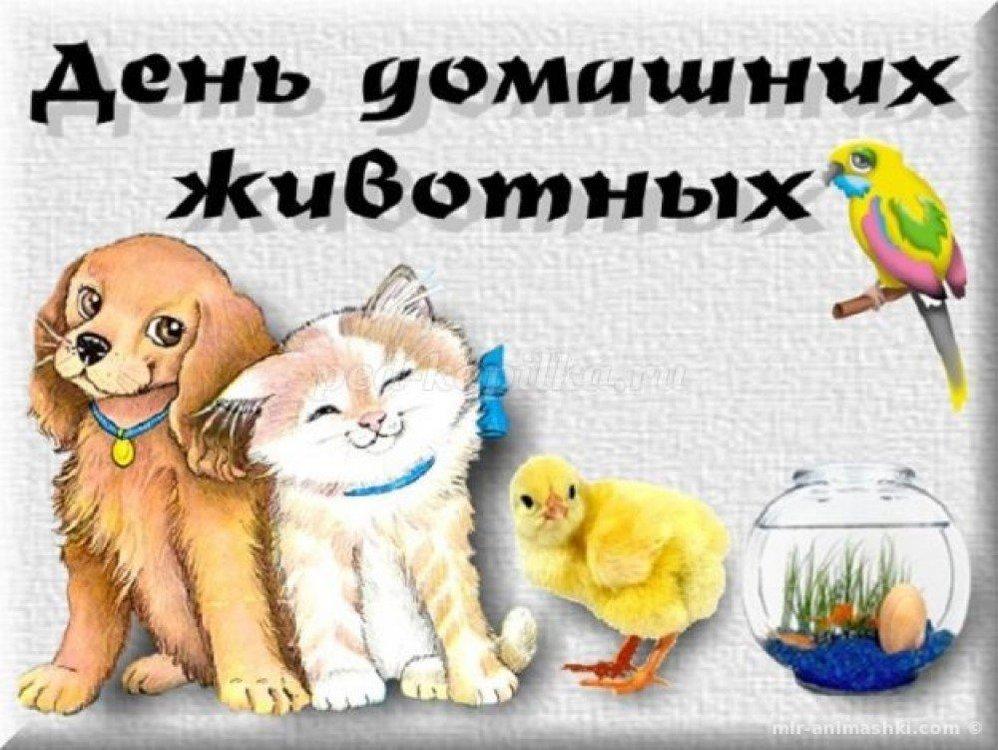 dom-jivothue.thumb.jpg.fb9483315270b904fdb68e0ee95042cb.jpg