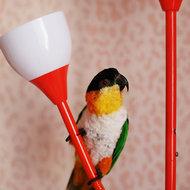 Olgasmallbird
