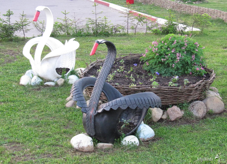 Лебеди из колес картинки