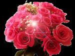 post-3510-1310541689_thumb.jpg