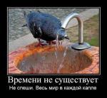 post-40755-1329898526_thumb.jpg