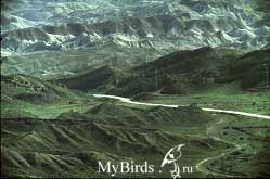 Вид северного склона с вершины горы Исак
