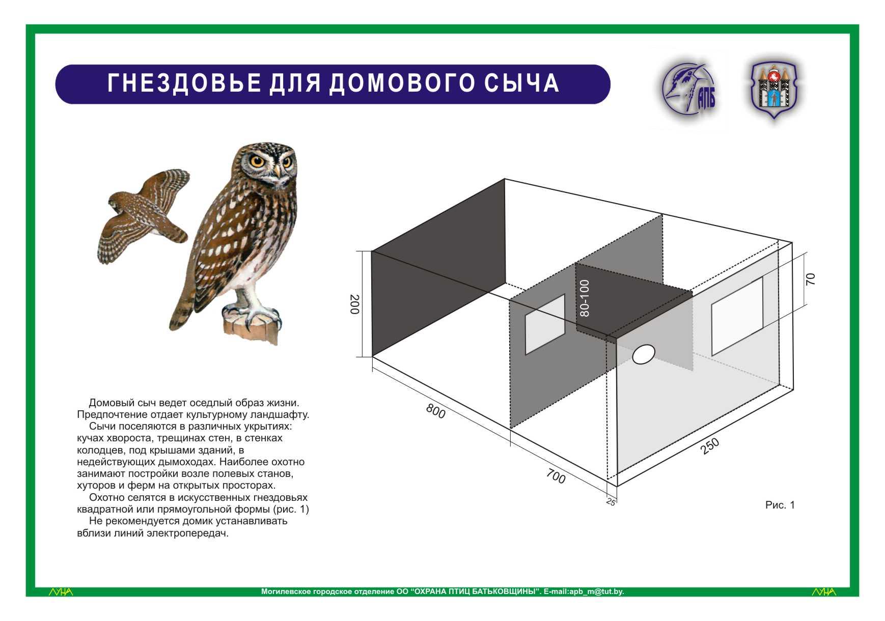 Гнездовья для сов - Энциклопедия владельца птицы